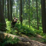 Pfeil und BogenWelt Dortmund Waldparcours, Bogenschießen Schütze mit Langbogen auf 3D-Ziel Luchs