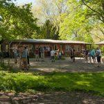 Pfeil und BogenWelt im Rombergpark Dortmund, intuitives Bogenschießen lernen