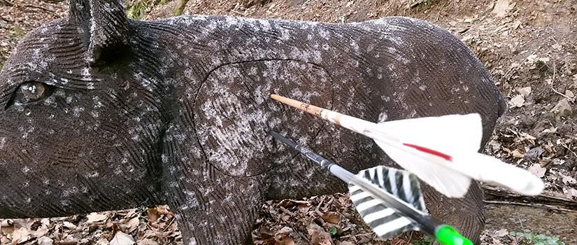 Bogenschießen Wildschwein 3D-Ziel, Pfeile im Kill