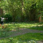 Pfeil und BogenWelt im Rombergpark Dortmund, traditionelles Bogenschießen