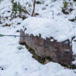 Pfeil und BogenWelt Dortmund Waldparcours, 3D-Ziel Wildschwein im Schnee, Pfeil im Kill