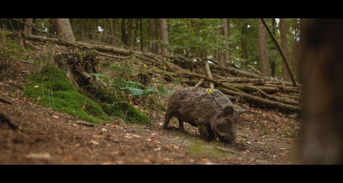 Pfeil und BogenWelt Dortmund Waldparcours, Bogenschießen Schütze mit Pfeil auf 3D-Ziel Wildschwein